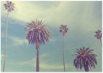 Plakát Palmy na Santa Monica Beach.