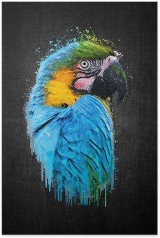 Plakát Parrot pták (Severe ARA). malovat efekt