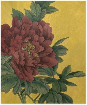Plakát Pivoňka květ na zlatém pozadí