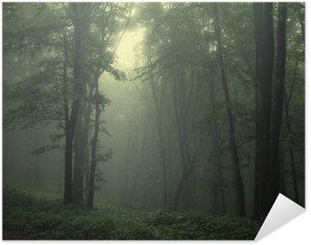 Plakat Pixerstick Zielony las po deszczu