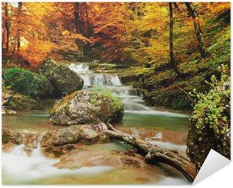 Plakát Podzimní potok lesy s žlutými stromy