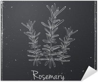 Plakát Rosemary bylin a koření.