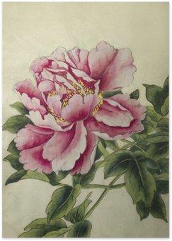 Plakát Růžová pivoňka květ