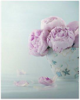 Plakát Růžová pivoňka květy