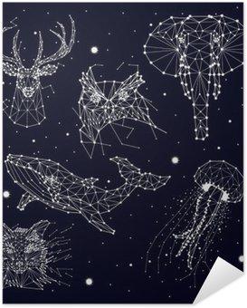 Plakát Sada konstelace, slon, sova, jeleni, velryby, medúzy, liška, hvězdy, vektorová grafika
