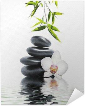 Plakat Samoprzylepny Biała orchidea kwiat bambusa końca