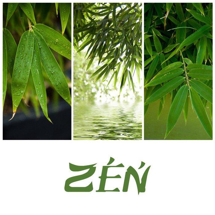 Plakát Složení zen bambusu - Rostliny