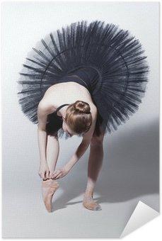 Plakát Tanečnice