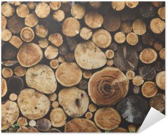 Plakát Textura dříví dřevo