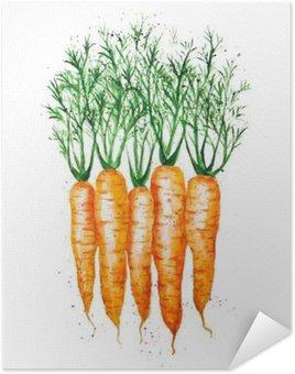 Plakát Vektor akvarel mrkev, izolovaných na bílém pozadí