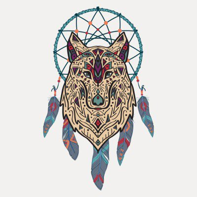Plakát Vektorové barevné ilustrace kmenové stylu vlka s etnickými ornamenty a lapač snů. Indiána motivy. Totem tetování. Design Boho.