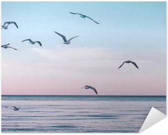 Plakát Velká skupina hejno racků na mořské vody v jezeře a létání na obloze na západ slunce, tónovaný s Instagram retro bederní filtry, film efekt