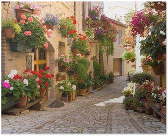 Plakát Vicolo con fiori, Spello