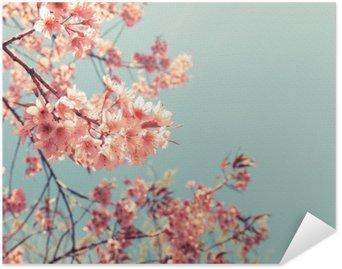 Plakát Vintage třešňový květ - sakury květiny. přírodní pozadí (retro filtr barevný efekt)