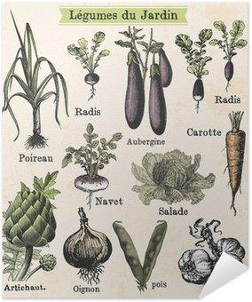 Plakát Zahradní zelenina