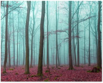 Plakát Zauber Wald Rot und türkis