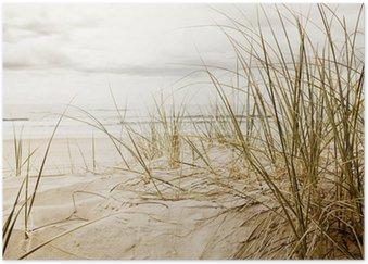 Plakát Zblízka vysoké trávě na pláži během zatažené sezóny