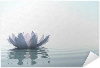 Plakát Zen květina Loto ve vodě