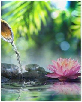Plakát Zen zahrada s černými kameny a růžové leknín