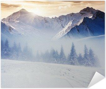 Plakát Zima