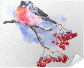 Plakát Zimní akvarel pozadí s bullfinches