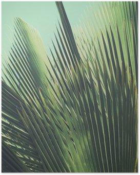 Poster Abstrakt tropischen Hintergrund Jahrgang. Palmblätter im Sonnenlicht.