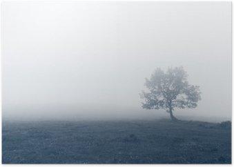 Poster Albero solitario con la nebbia
