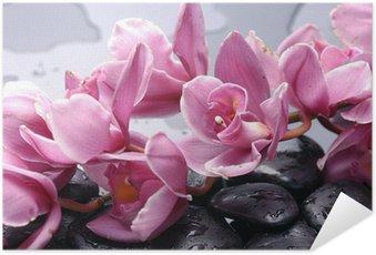 Poster Autoadesivo Set di orchidea cattleya fiore e pietra con gocce d'acqua