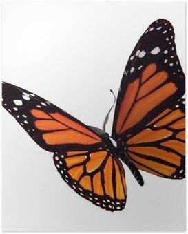 Poster Bullterfly