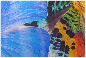 Poster Bunte Schmetterlinge Flügel