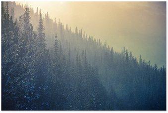 Poster Colorado Winter Time