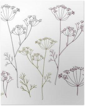 Poster Dill oder Fenchel Blumen und Blättern.