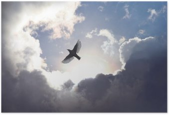 Poster Engels-Vogel im Himmel