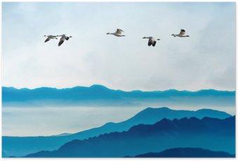 Poster Gänse fliegen gegen den blauen Himmel im Hintergrund