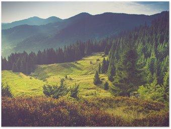 Poster HD Bello paesaggio della montagna estate al sole.