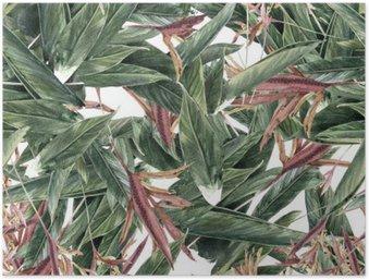 Poster HD Pittura ad acquerello di foglie e fiori, seamless