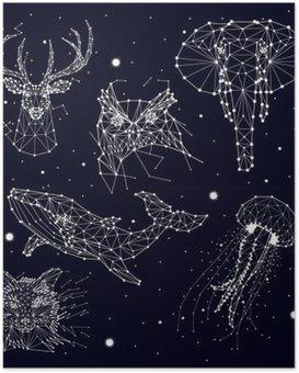 Poster HD Serie di costellazione, elefante, gufo, cervi, balene, meduse, volpe, stella, grafica vettoriale