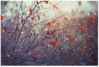 Poster Hintergrund mit Zweigen und Regentropfen