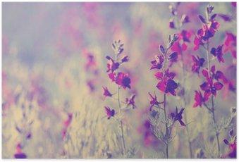 Poster Lila wilde Blumen
