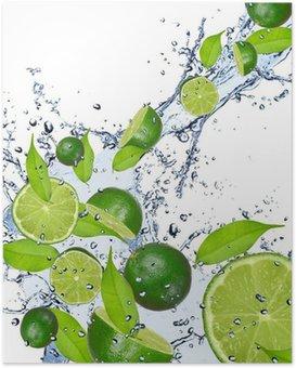 Poster Limes cadono in acqua per bambini, isolato su sfondo bianco