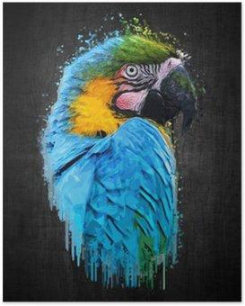 Poster Parrot Vogel (Severe Macaw). Effekt-Lack