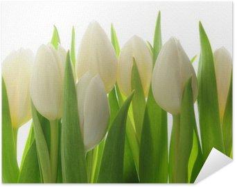 Poster Pixerstick Tulipani