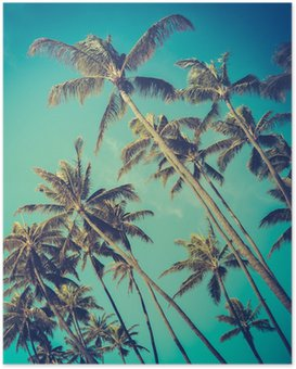 Poster Retro Diagonal Palmen in Hawaii