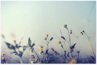 Poster Vintage Foto von der Natur Hintergrund mit wilden Blumen und Pflanzen