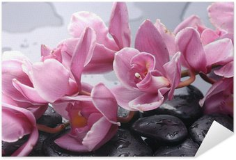 Póster Autoadesivo Set of cattleya orchid flower and stone with water drops