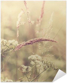 Póster Autoadesivo Summer Meadow