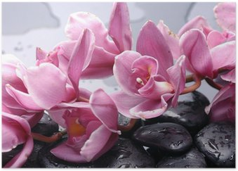 Póster Set of cattleya orchid flower and stone with water drops