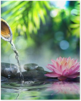Póster zen garden with black stones and pink waterlily