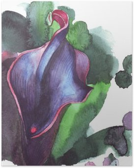Poster Çiçek calla suluboya illüstrasyon