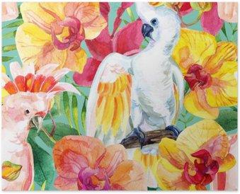 Poster Akvarell Australian kakadua seamless